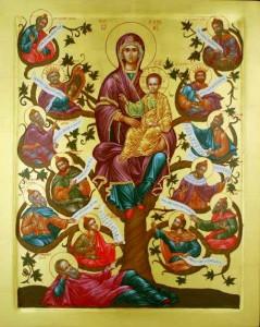 Jesus-BVM in family tree