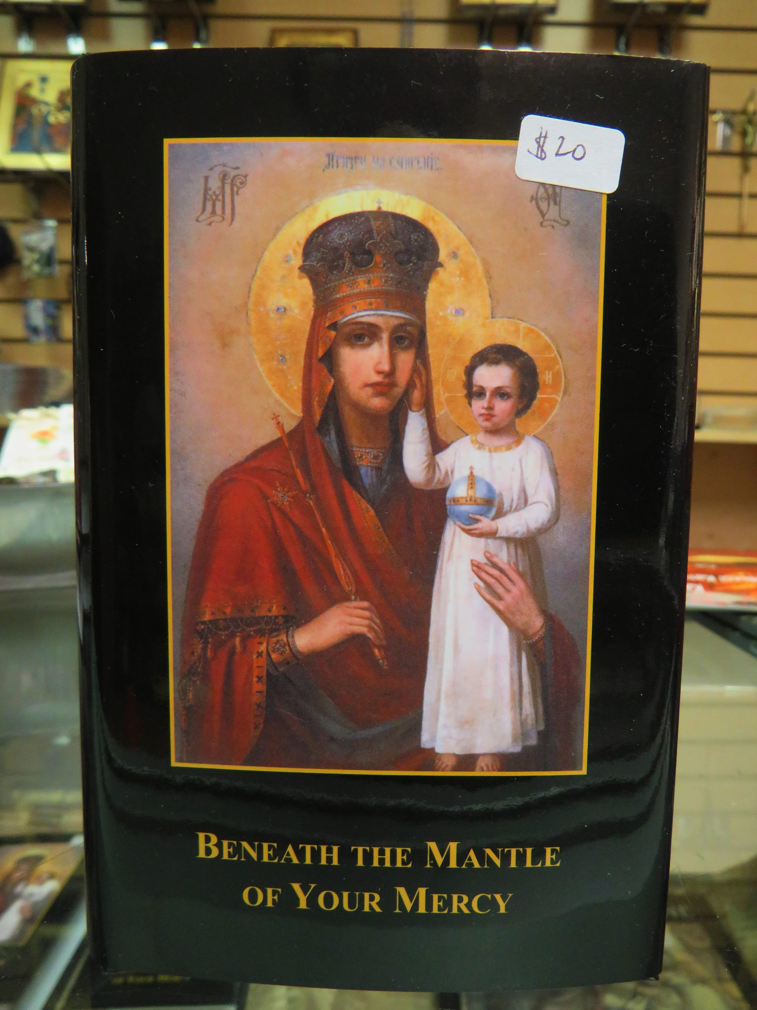 Fr. Peter Babej's Book